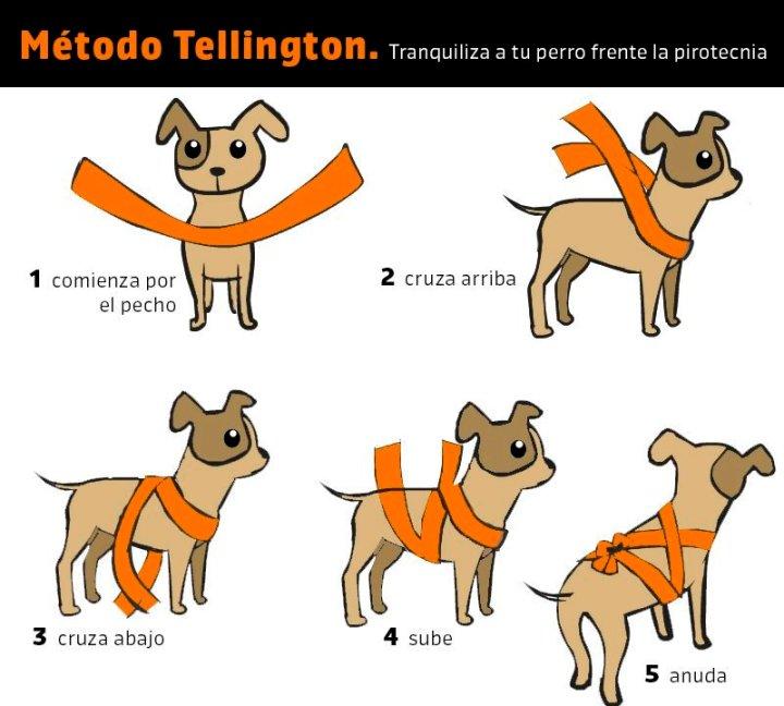 Tellington-Ttouch-mascotas-pirotecnia.jpg