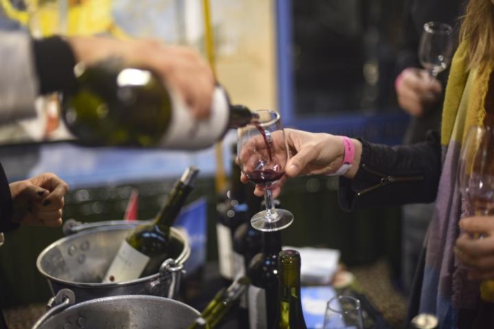 Feria de vinos organicos y sustentables (51)