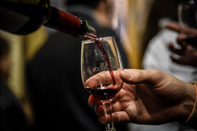 Feria de vinos organicos y sustentables (87)